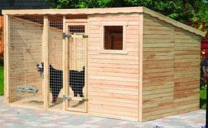 Hundezwinger mit Pultdach und Boden