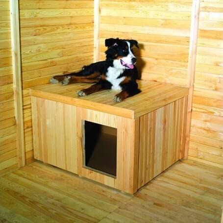 Beste Hundehuette mit Flachdach kaufen