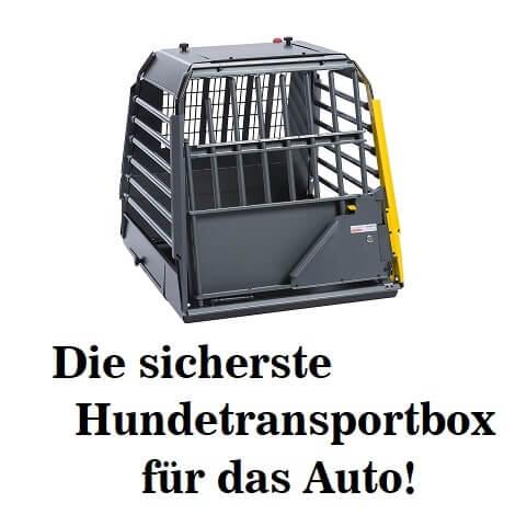Die beste Hundetransportbox für das Auto